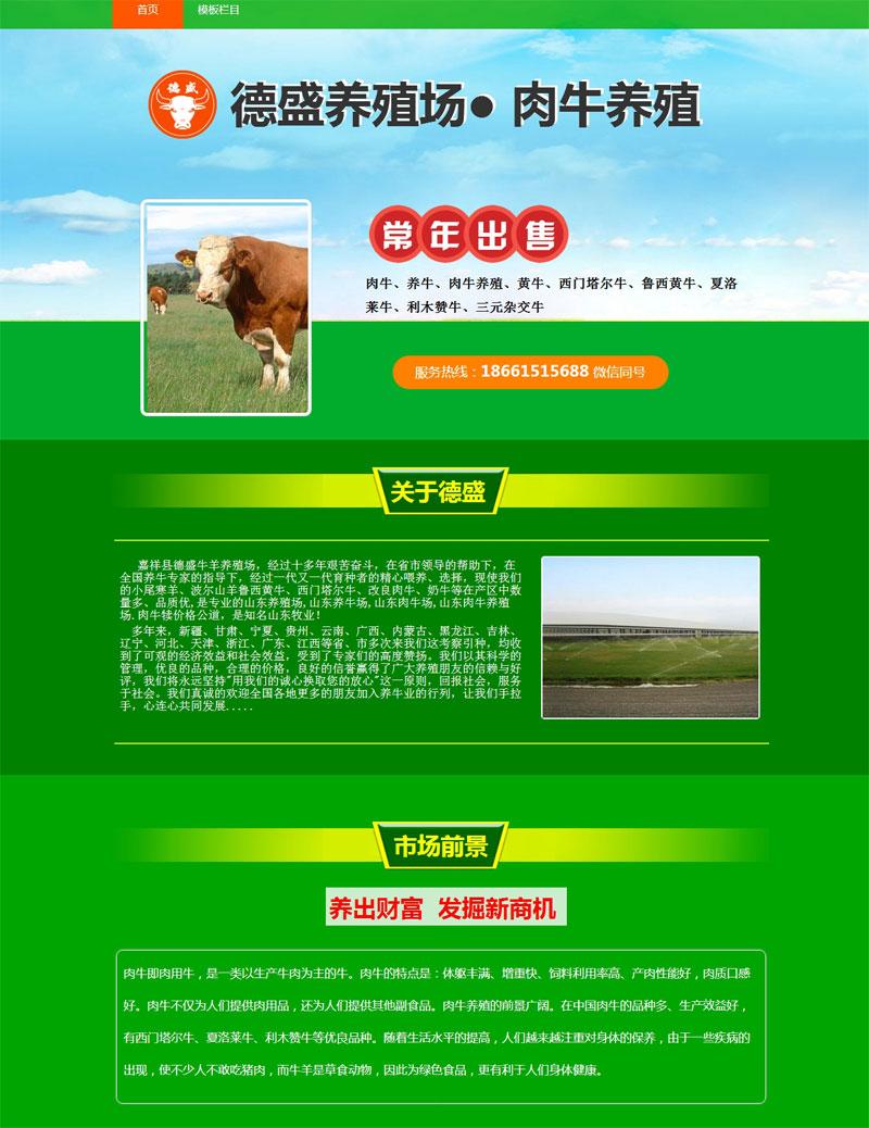 绿色产品宣传单页模板...